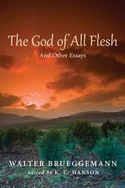 The God of All Flesh And Other Essays Walter Brueggemann.jpg