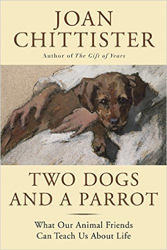 Two Dogs and a Parrot- What Our Animal Friends Can Teach Us About Life.jpg