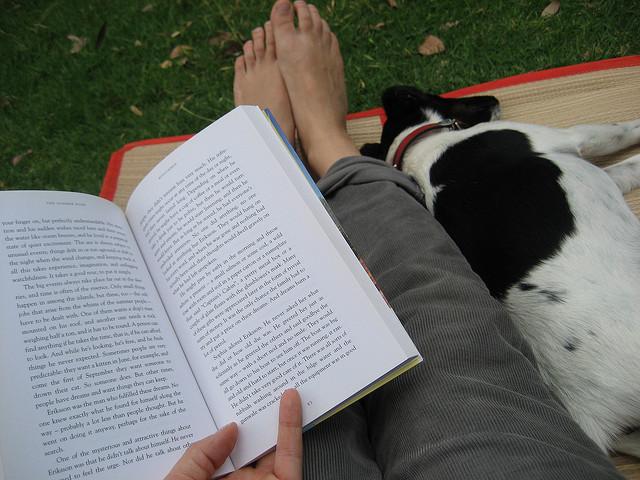 backyard reading.jpg