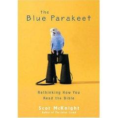blue parakeet 2.jpg