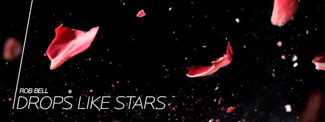 drop like stars banner.jpg