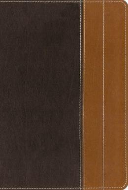 essentials brown.jpg