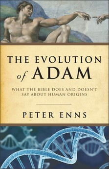 evolution of adam.jpg