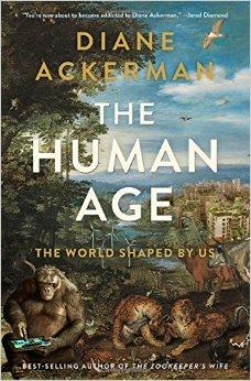 human age ackerman.jpg
