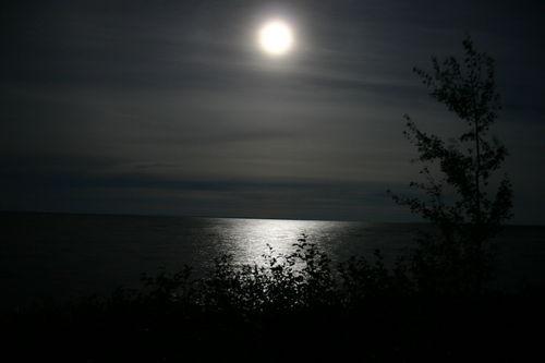 moonlight-night--large-msg-117807345376.jpg