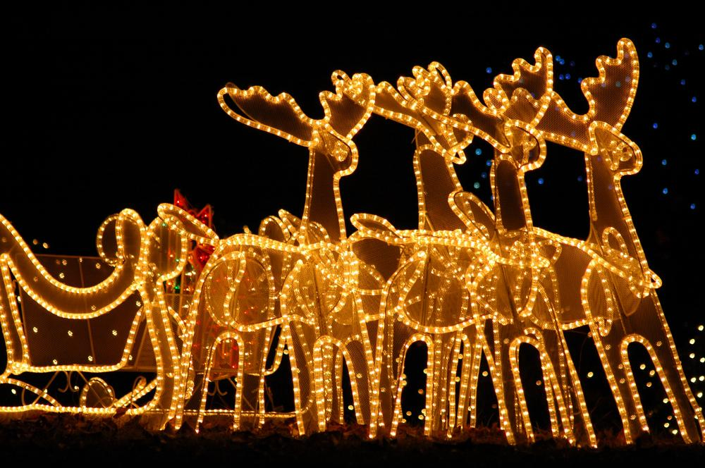 reindeer-led-christmas-lights.jpg