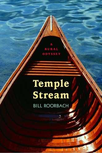temple stream.jpg