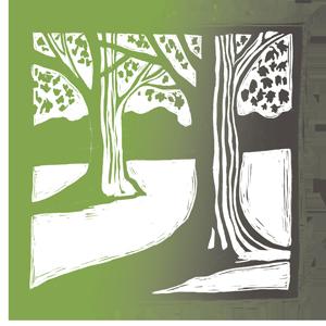 tree_beginnings.png