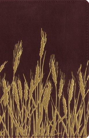 wheat bible.jpg